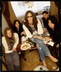 THE BLACK CROWES Announce Oodles of Tour Dates For 2008